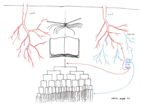 「序 リゾーム」 - 第4・5パラグラフ