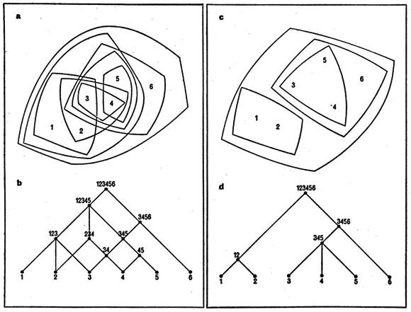 セミ・ラティス構造(a,b)とツリー構造(c,d)